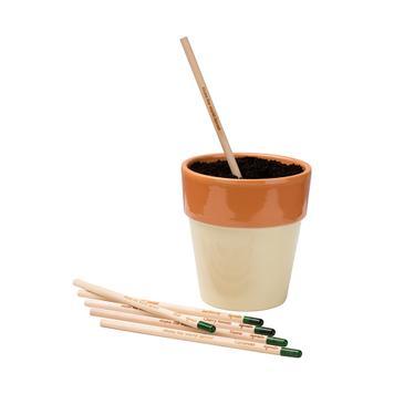 "Potlood ""Sprout"", het inplantbare potlood"