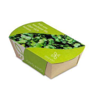 Microgreens-tuintje